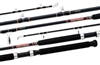 Daiwa Beefstick BT Heavy Trolling and Bottom Fishing Rods