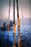 G-Loomis Salmon Series Rods
