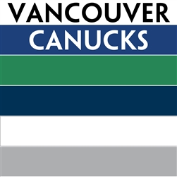 Vancouver Canucks team colors custom printed mini hockey stick. Personalized mini hockey stick by ministixx.