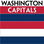 Washington Capitals team colors custom printed mini hockey stick. Personalized mini hockey stick by ministixx.