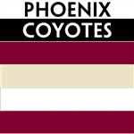 Phoenix Coyotes team colors custom printed mini hockey stick. Personalized mini hockey stick by ministixx.