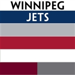 Winnipeg Jets team colors custom printed mini hockey stick. Personalized mini hockey stick by ministixx.