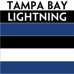 Tampa Bay Lightning team colors custom printed mini hockey stick. Personalized mini hockey stick by ministixx.