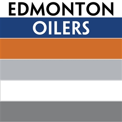 Nhl colors edmonton oilers custom mini hockey sticks for Custom t shirts edmonton