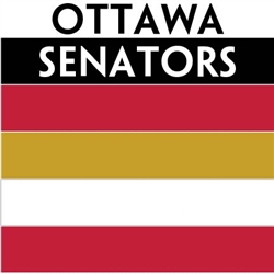 Ottawa Senators team colors custom printed mini hockey stick. Personalized mini hockey stick by ministixx.