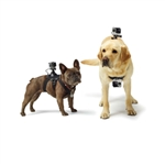 GoPro Fetch Dog Harness Attachment, GoPro Promotional Accessories, GoPro Custom Logo
