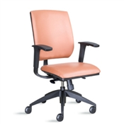 9to5 Brio 2070 Mid-Back Chair with Mesh Back & Leather Upholstered Seat