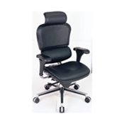 Eurotech Ergohuman Ergonomic Executive Chair