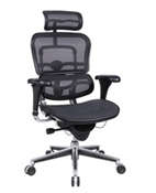 Ergohuman mesh fabric office chair