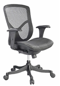 Fuzion Ergomic Mesh Chair