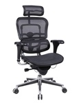 Eurotech Mesh Ergonomic Chair w/ Headrest