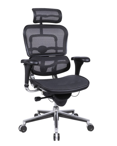 Me7erg Mesh Eurotech Ergo Mesh Ergonomic Chair W Headrest