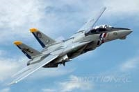 Freewing F-14 Tomcat Twin 80mm EDF Jet - PNP