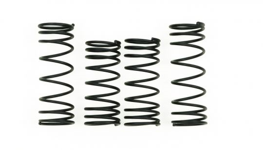 TRAXXAS GTR Shock Springs - Black