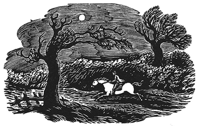 The Engraver's Cut (Diana Bloomfield): Rider on Horse