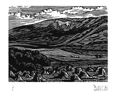 The Engraver's Cut (Diana Bloomfield): White Horse on Downs