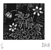 The Engraver's Cut (Diana Bloomfield): Anemones