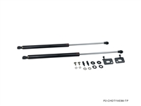 P2M TOYOTA AE86 COROLLA CARBON ENGINE HOOD DAMPER