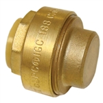"EZ-Bite 2012064 1"" Endstop Cap, (Like Sharkbite) Push Fit Fitting For Use With Copper Tubing CTS, CPVC & Pex"