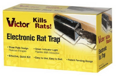 how to instantly kill rats