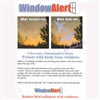Window Alert - Protective Bird Window decals