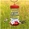 Hummingbird Feeder - Top Fill Glass 24oz