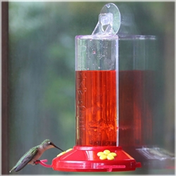 Hummingbird Feeder - Window Mounted Plastic