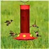 Hummingbird Feeder - 30oz Plastic