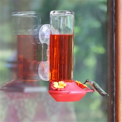 Window Mounted 14OZ Glass Hummingbird Feeder