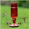Hummingbird Feeder- 16oz Antique - Red