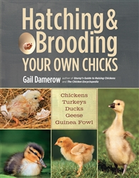 Country Living How-To Books: Hatching and Brooding Your Own Chicks