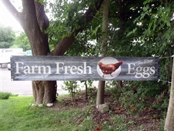 Banner - Farm Fresh Eggs