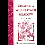 Gardening How-To Book: Creating a Wildflower Meadow