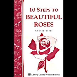 Gardening How-To Book: 10 Steps to Beautiful Roses