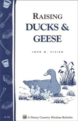 Building Bulletins by Storey: Raising Ducks & Geese