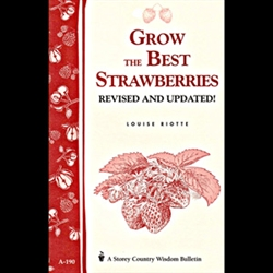 Gardening How-To Book: Grow the Best Strawberries