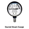 Pressure Cooker-Steam Gauge