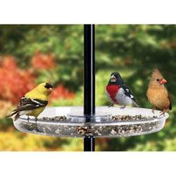 Droll Yankee Universal Seed Tray - Bird & Squirrel Feeders