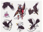 Apache Jil SET 17 / SHEET 5