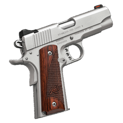Kimber Pro Carry II Stainless 9mm 3200323