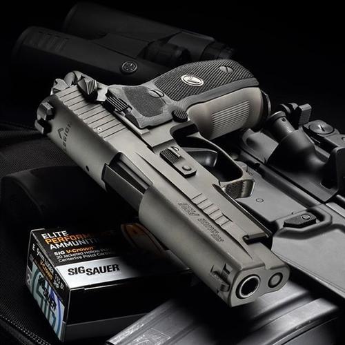 Champion Firearms   Sig Sauer Handguns for Sale