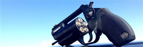 Champion Firearms   Taurus Handguns for Sale