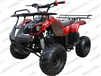 Coolster 3050D | Full Auto ATV