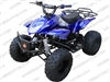 Coolster 3125A-2 | CA Legal | Full Auto ATV