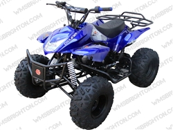 Coolster 3125A-2 | Full Auto ATV