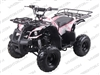 Coolster 3125R | CA Legal | Full Auto ATV