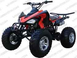 Coolster 3175S | Full Auto ATV