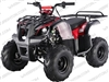 "TaoTao/Tao Motor D125, ATA125D | CA Legal | 16"" Tires, Full Auto ATV"