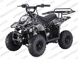 "TaoTao/Tao Motor B110, Boulder B1 | CA Legal | 14.5"" Tires, Full Auto ATV"