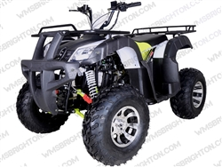 "TaoTao/Tao Motor Bull 200 | CA Legal | 23""/22"" Tires, Full Auto ATV"